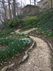 My Favorite Winding Path!